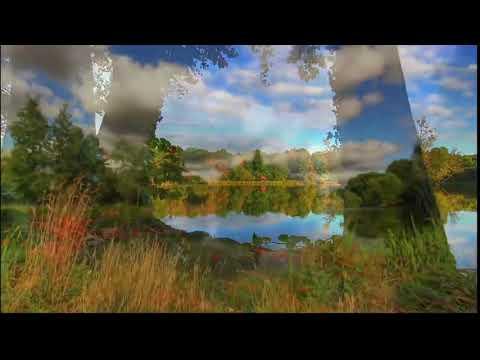 Cara delevingne ( Burak yeter - Tuesday )