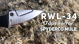 RWL34 - Spyderco Mule Edge Retention Test