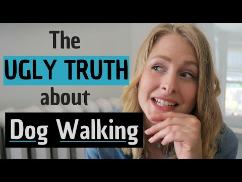What Nobody Tells You About Dog Walking