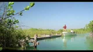 Soy Quintana Roo con Demian Bichir HD