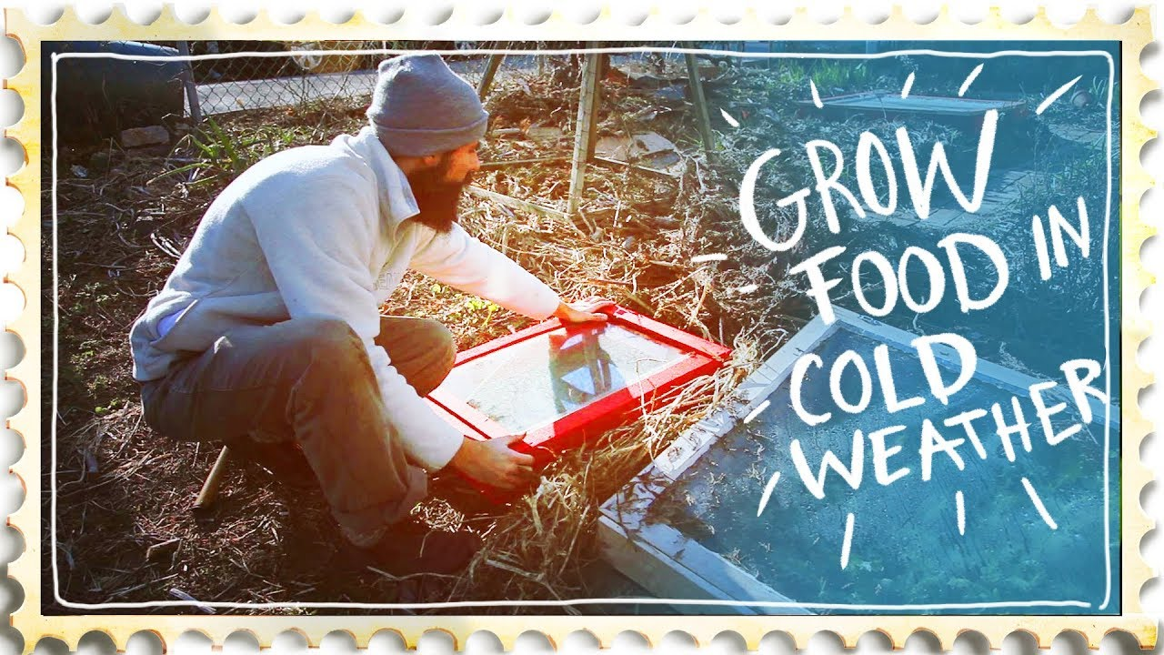 Mini Greenhouse Effect - Building a Cold Frame
