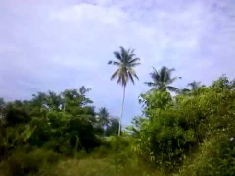 286-289; Kuala Terengganu to Kota Bharu [Ferry to Thailand] (Cycling & Camping In Malaysia)
