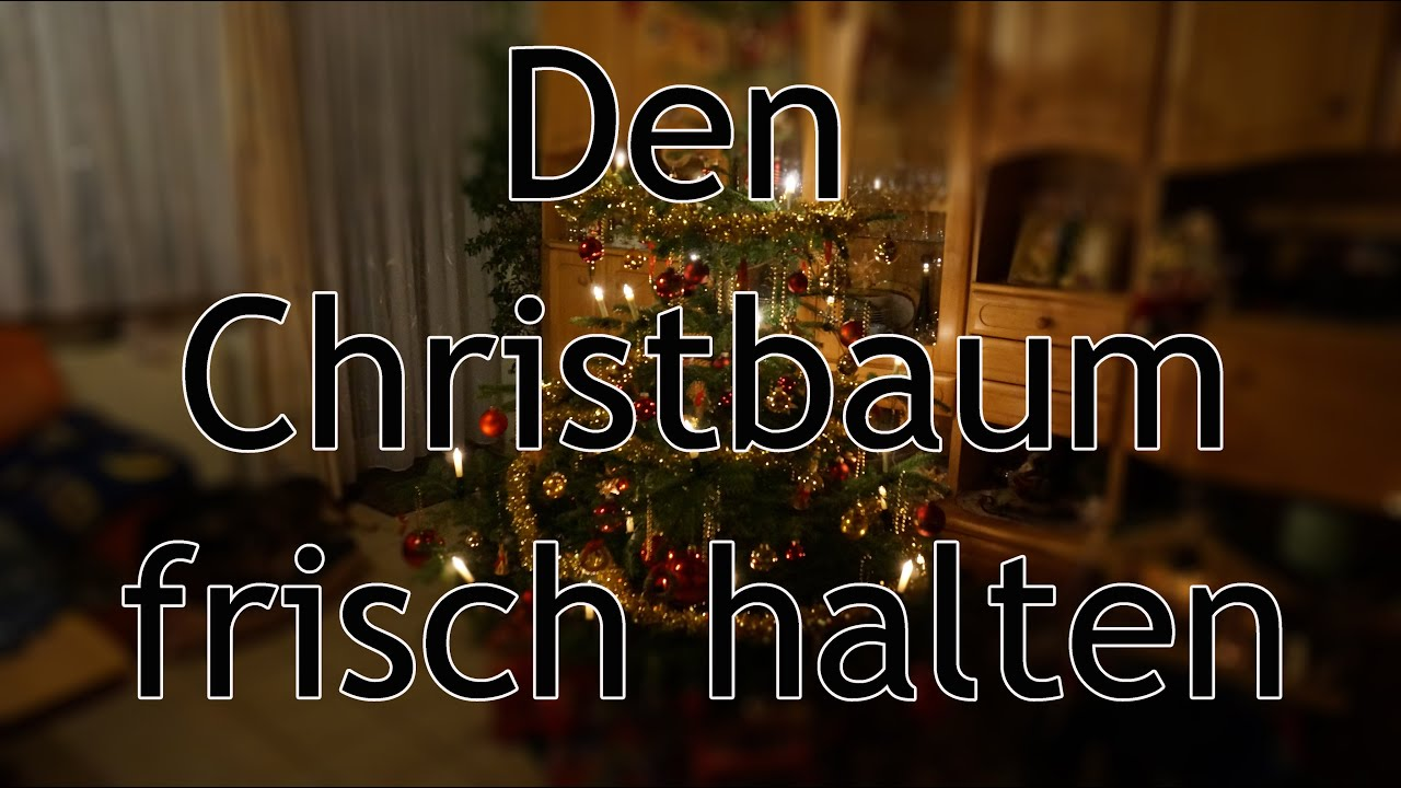 9 tipps um den christbaum lange frisch zu halten youtube. Black Bedroom Furniture Sets. Home Design Ideas