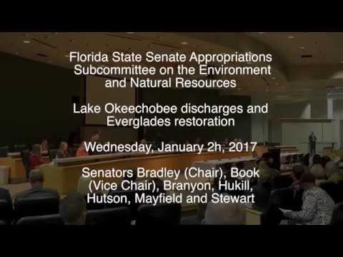 Senate Subcommittee Hearing on Lake Okeechobee and the Everglades, Hearing Two, January 25th, 2017