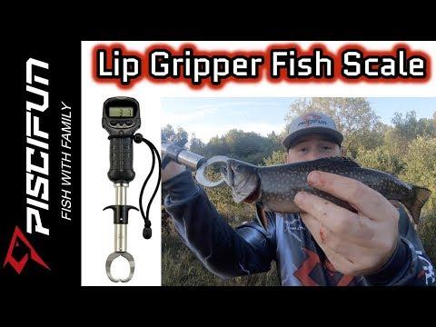 Piscifun Lip Gripper Fish Scale- Brook Trout