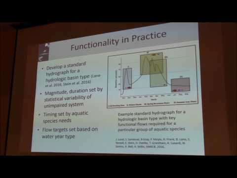 Managing Functional Environmental Flows in Regulated River Systems