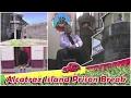 Hot Wheels Track | Alcatraz Island Prison Break