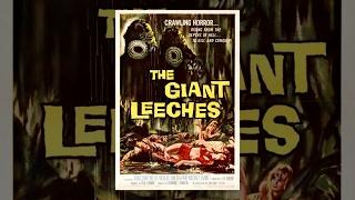 Нападение гигантских пиявок (1959) фильм