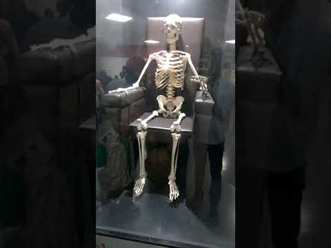 Science museum 2018 visit  at delhi ...