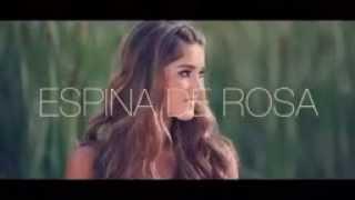 Espina de Rosa   Andy Rivera Ft Dalmata              VIDEO OFICIAL