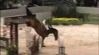 Evacuate the Dancefloor- Horses