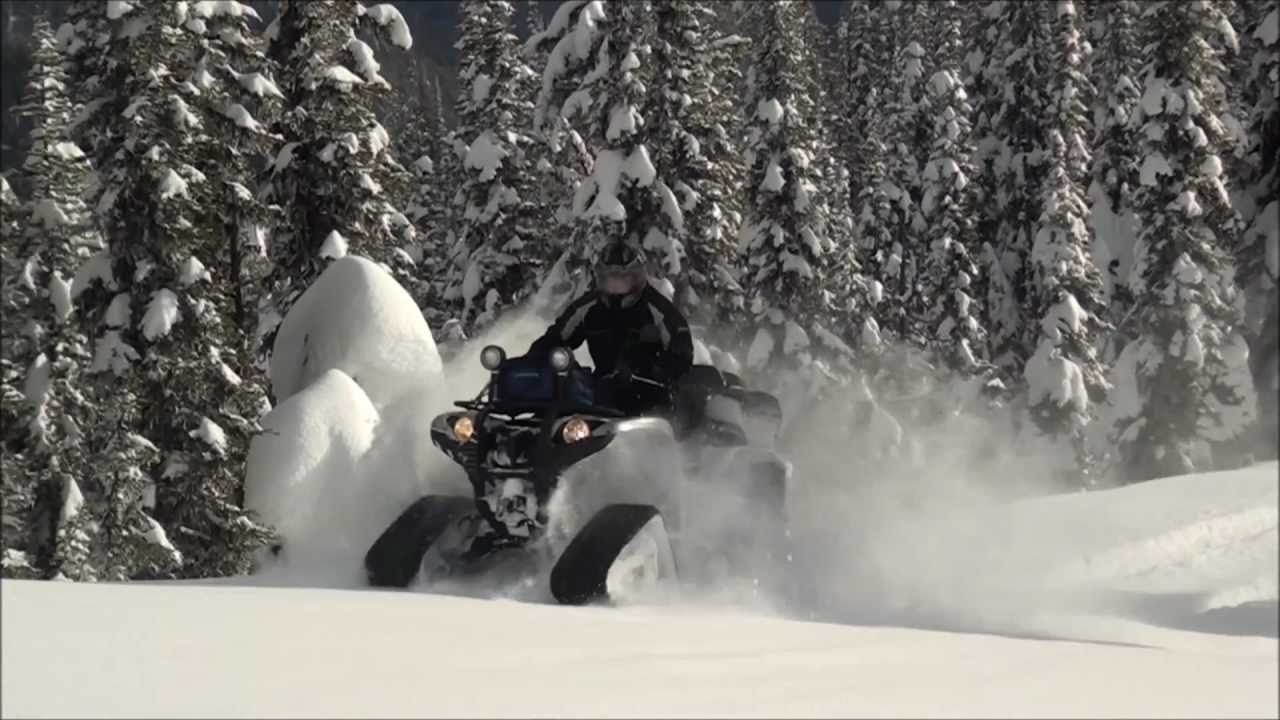 Yamaha Grizzly 700 >> 2011 Yamaha Grizzly 700 FI ATV with Camoplast Track Set in ...