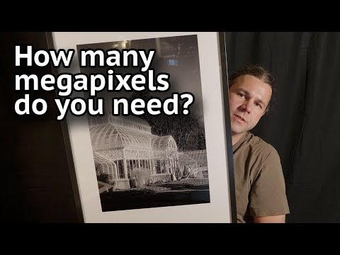 How Many Megapixels Do You Need?