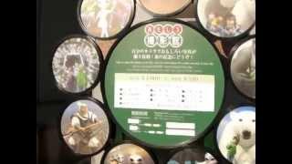 さかひろ(おっぱい)イズム→http://ameblo.jp/sakamoto-business/ 北海...