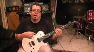How to play Bro Hymn by Pennywise on guitar by Mike Gross
