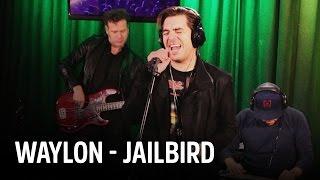 Waylon - Jailbird | Live bij Evers Staat Op