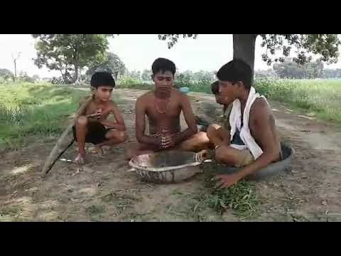 Mst bhojpuri gali