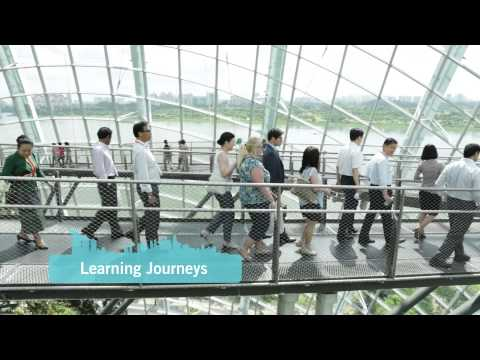 World Cities Summit 2016 Promotional Video