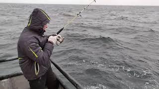 Морская рыбалка 27 01 2020 Выход на треску Калининградская область