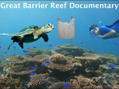 Great Barrier Reef Documentary