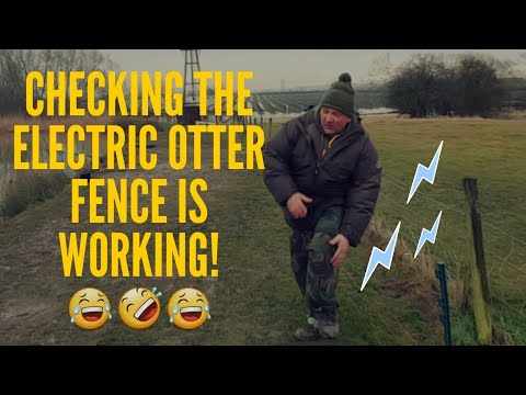*CARP FISHING* OTTER FENCE 🤣