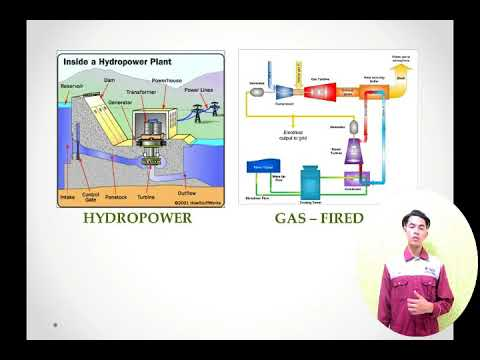THE INTRODUCTION OF LOCAL (MALAYSIA ) ELECTRICAL POWER SYSTEM
