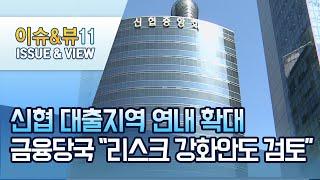 """신협 대출지역 연내 확대…금융당국 """"리스크 강화안도 검…"""