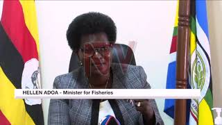 Uganda-Kenya trade: Row over impounded fish is a symptom of bigger underlying issues