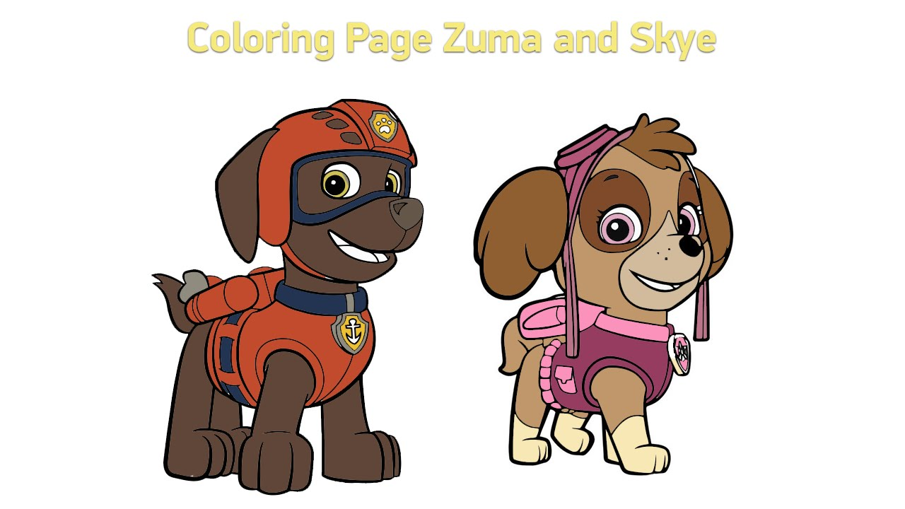 Coloring Pages for kids Paw Patrol Zuma and Skye 2016 YouTube