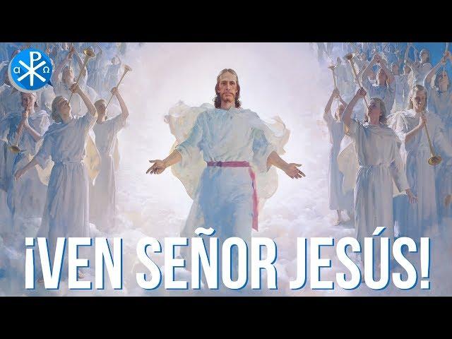 ¡Ven Señor Jesús!   Perseverancia - P. Gustavo Lombardo