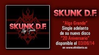 """SKUNK D.F.: Audio """"Algo grande"""" tema inédito adelanto del recopilatorio """"20 Aniversario"""""""