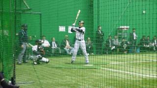2009 プロ野球合同 トライアウト 今岡選手
