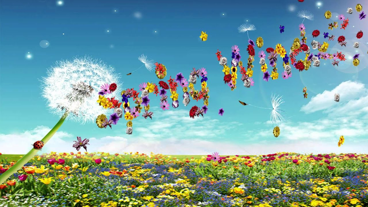 Cool Wallpaper Music Spring - maxresdefault  Best Photo Reference_279589.jpg