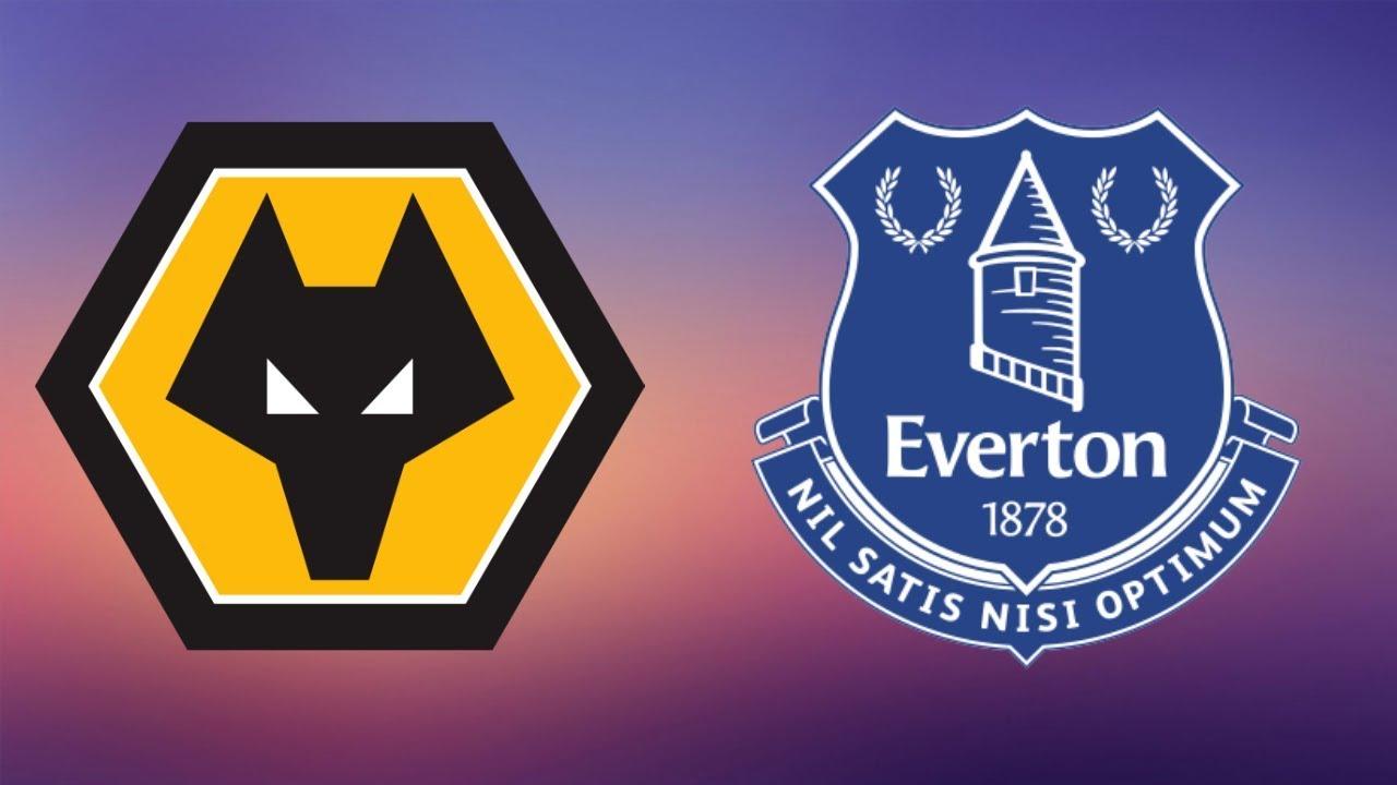 Wolves Vs Everton Full Match Premier League 2018 19