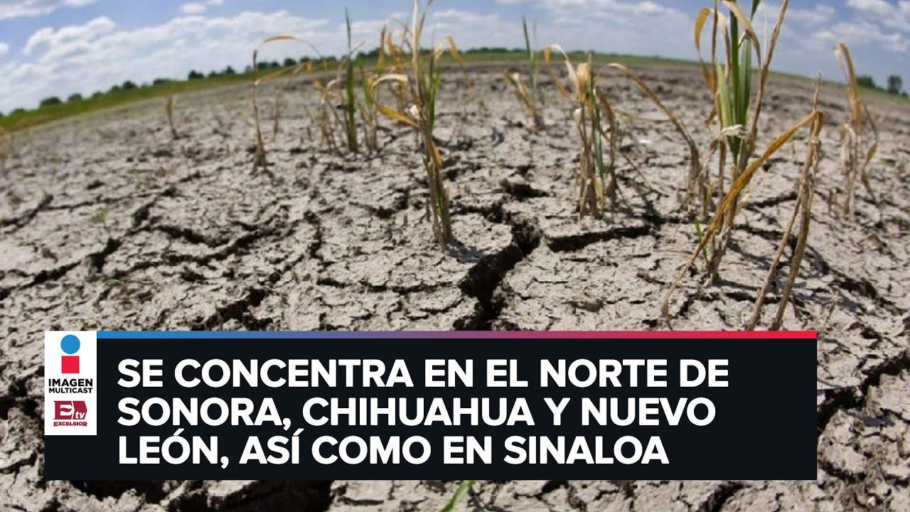 Severa sequía afecta el 83% de México