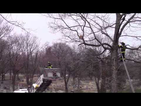 Kearny Fire Department Unusual Incident 3-20-16