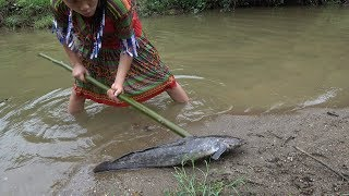 Primitive technology - Survival skills catch big fish and cooking fish - Eating delicious