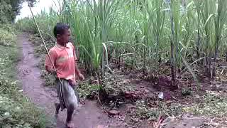 Download Video Heboh seorang kakak yang sengaja mencelakakan dan menghajar adik kandungnya sendiri MP3 3GP MP4