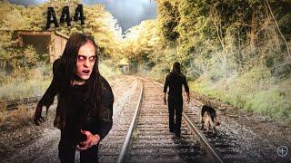 Live Q&A Film Update The Vegan Zombie