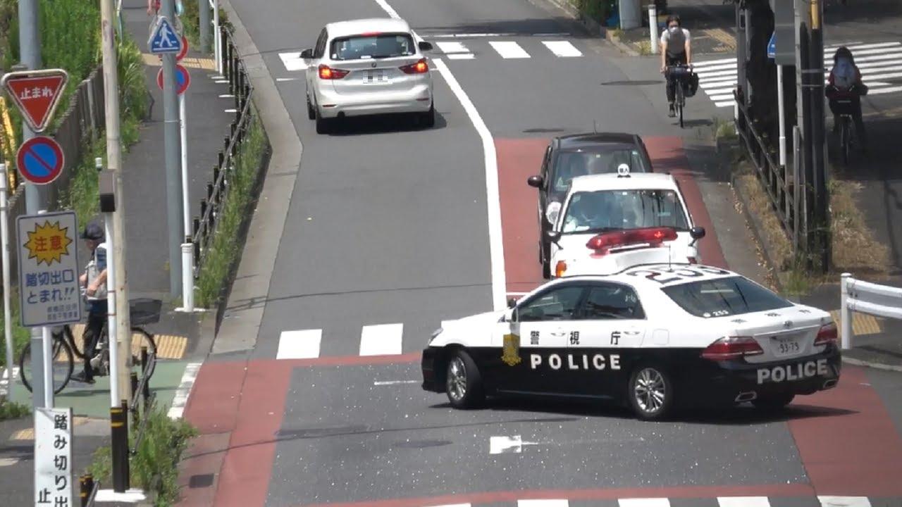 一時停止をノーブレーキで無視した危険な違反車をパトカーが直ちに捕まえるナイスな瞬間
