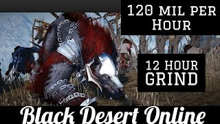Black Desert Online [BDO] 120mil Per Hour, Elites at Blood Wolf: Silver Breakdown (12 Hour)
