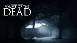 Forest of the Dead (10+ Hours Dark Ambient)