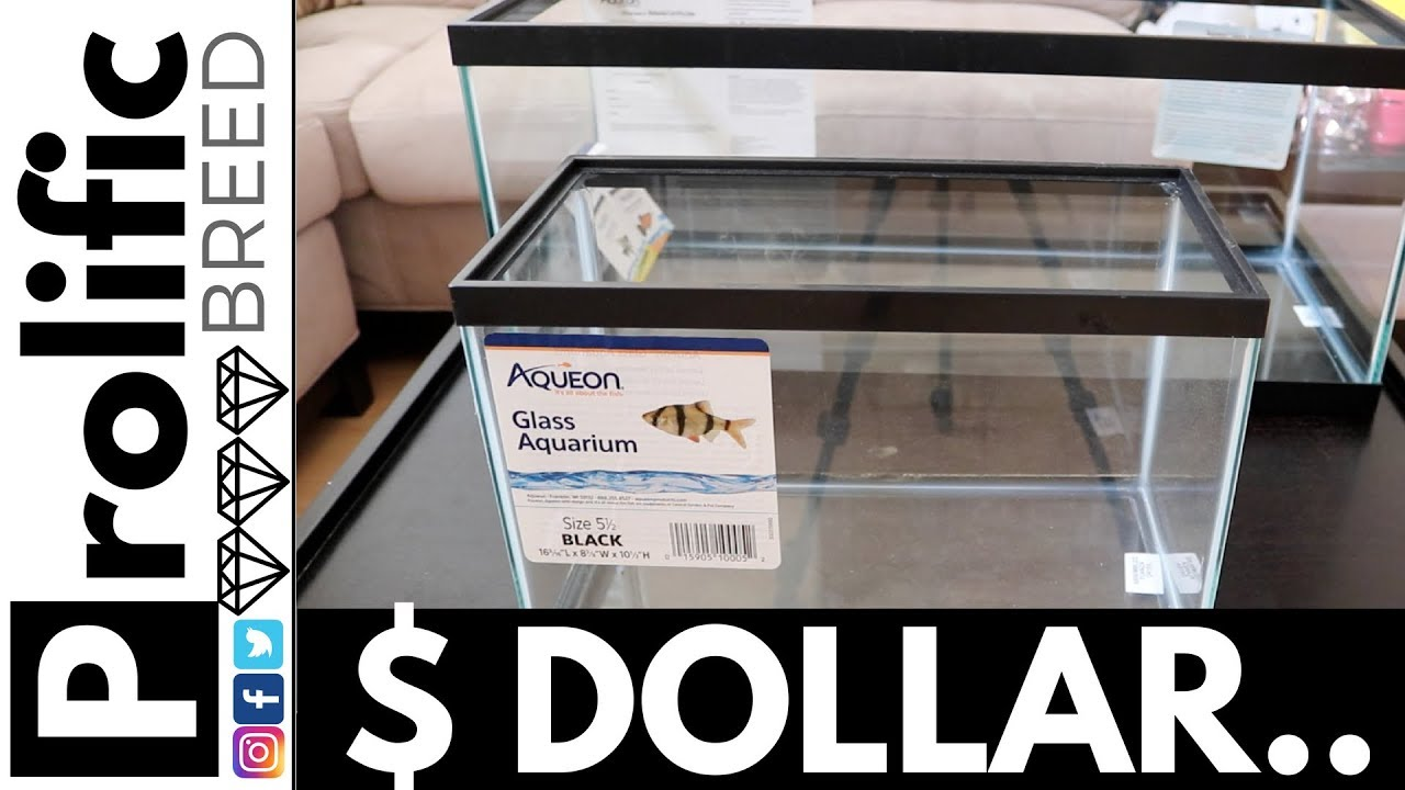 DOLLAR PER GALLON SALE & TIPS ON AQUEON TANK SELECTION AND LIDS