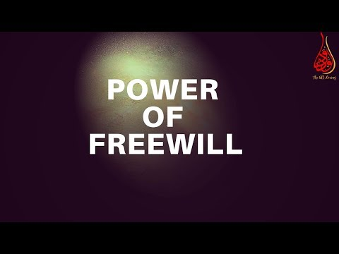 Does Allah's Knowledge of The Future Eliminate Our Power of Freewill?