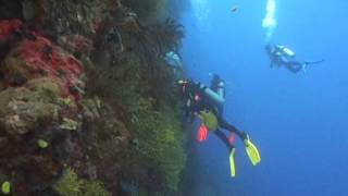Fiji Islands Diving Vacations & Travel Videos