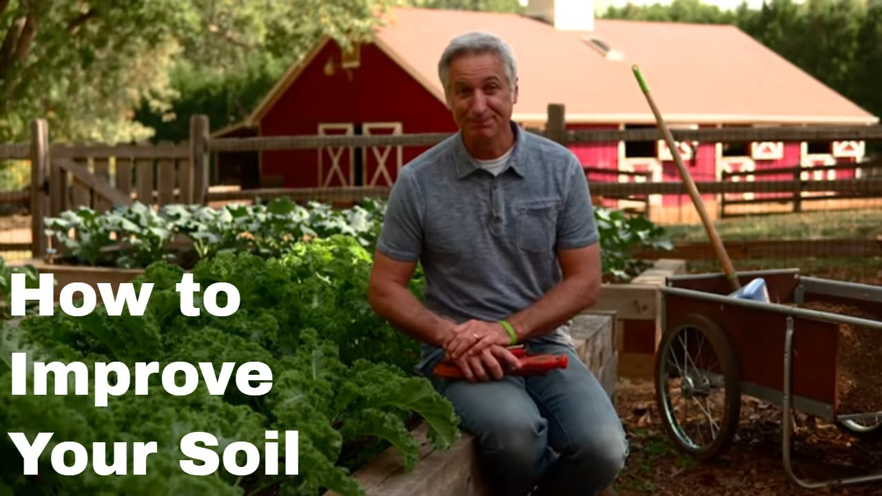 how to make your soil better