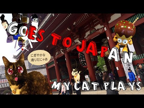 My Cat Plays: Goes to Japan