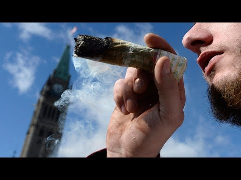 Bill Cunningham - North American Cannabis Sales On The Rise Thanks To Canada