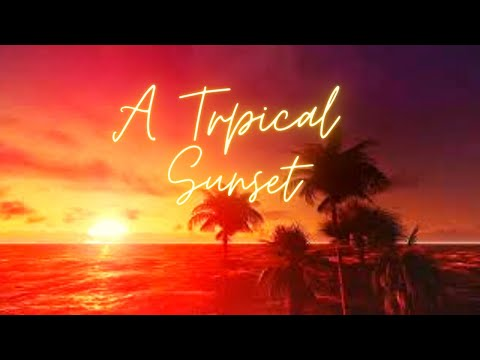 🎧Tropical Relaxing Sunset for Deep Sleep Study & Anxiety Nature ASMR