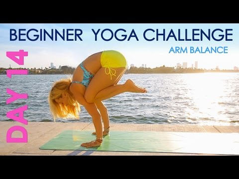 Day 14 Beginner Yoga Challenge - Learn to Fly in Arm Balances